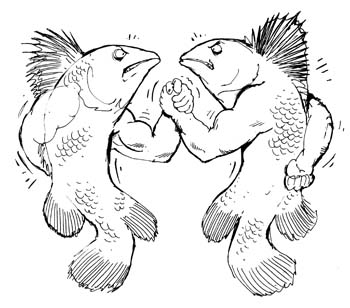 Fish_Arm_Wrestle1
